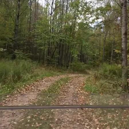Langlade County ATV Trail