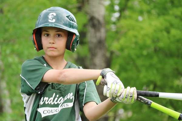 Thirds Baseball Highlights 2016