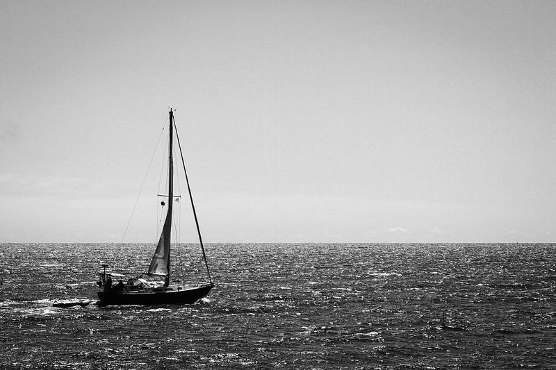 bailey_island_2019-34-LR.jpg
