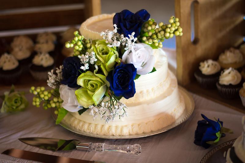 Cake1-7992.jpg