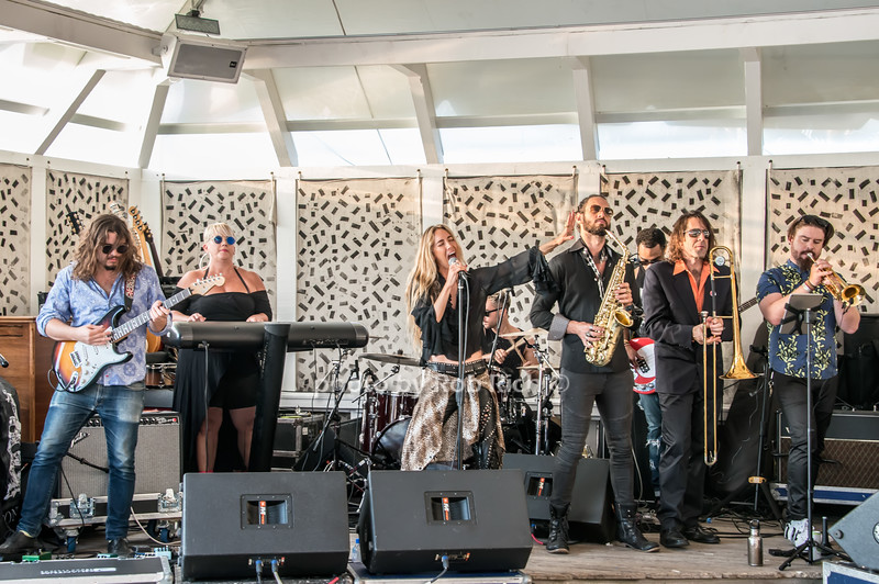 The Wallflowers & Miss Velvet & The Blue Wolf  at the Surf Lodge