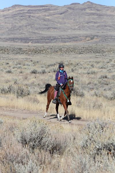 Autumn Sun endurance ride, Idaho