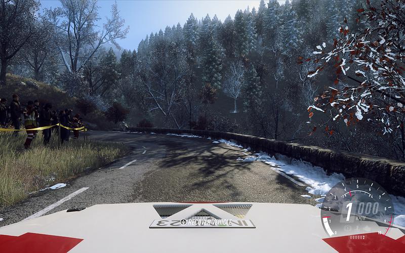 Dirt Rally 2 (not on maximum detail)