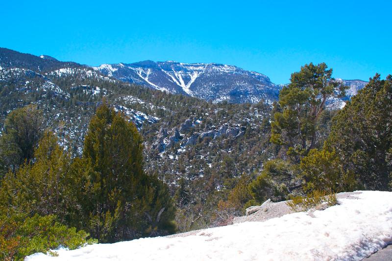 Mojave Desert & Red Rock Canyon, Vegas-DSC_2202-078.jpg