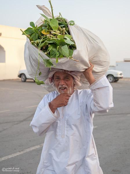 IMG_8760-Ibra- Oman.jpg