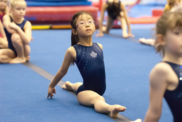 T's gymnastics
