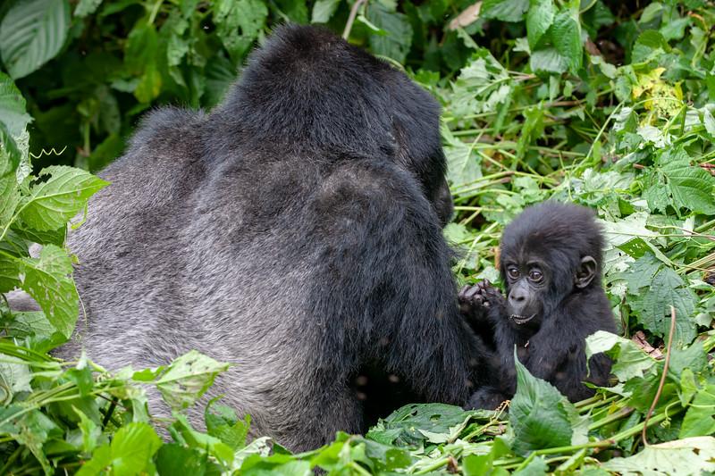 Uganda-15.jpg