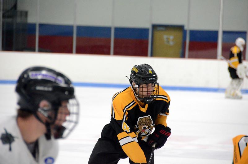 141005 Jr. Bruins vs. Springfield Rifles-085.JPG