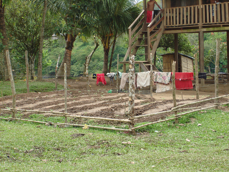Gardens in San Andres