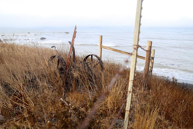 Artifacts of Punta Gorda Past
