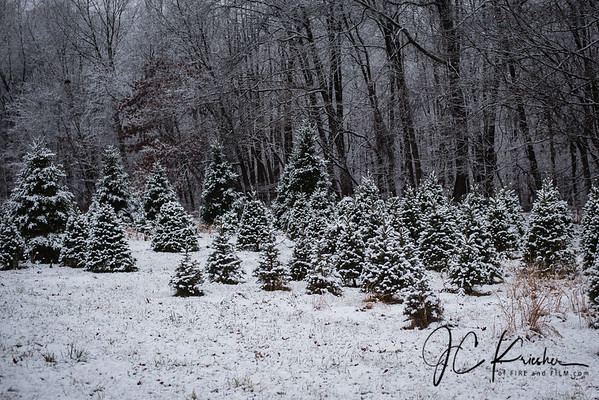 Snowy Scenes - Ringtown, Pa - 12/02/2019