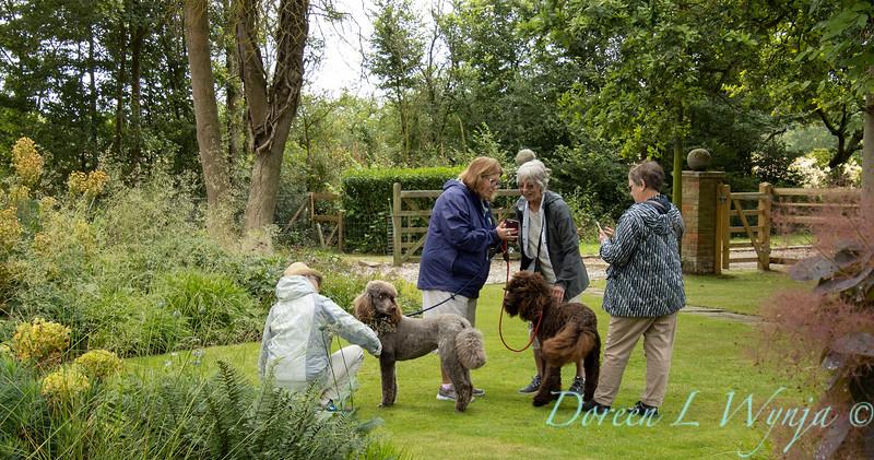 Beechleigh Garden - Jacky O'Leary garden designer_2997.jpg