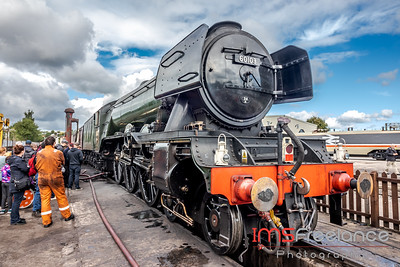 The Flying Scotsman @ Crewe Heritage Centre (Cheshire)