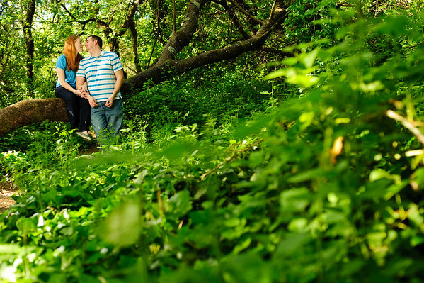 Doug and Kelly - Engagement Photography, Covered Bridge Park, Felton, California
