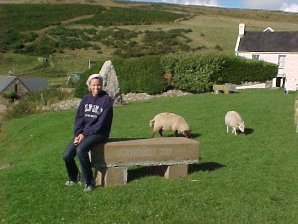 Darcy and Sheep - Rhossili Bay.JPG