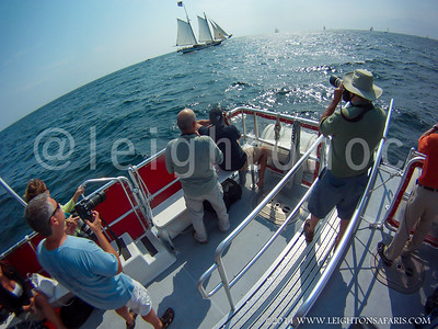 Photo Safari - Gloucester Schooner Race