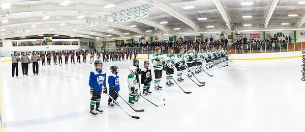 2018-19_LDC_Boys Hockey