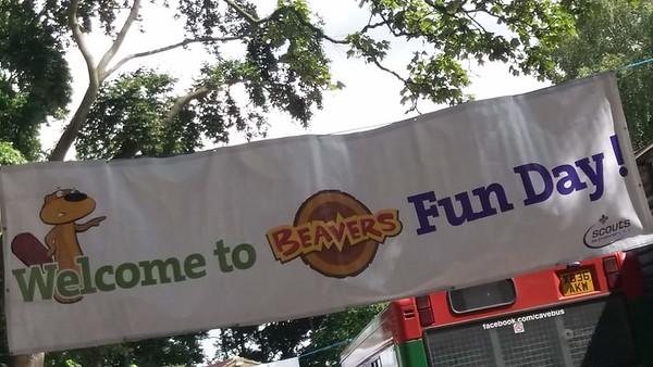 BEAVERS: Fun Day