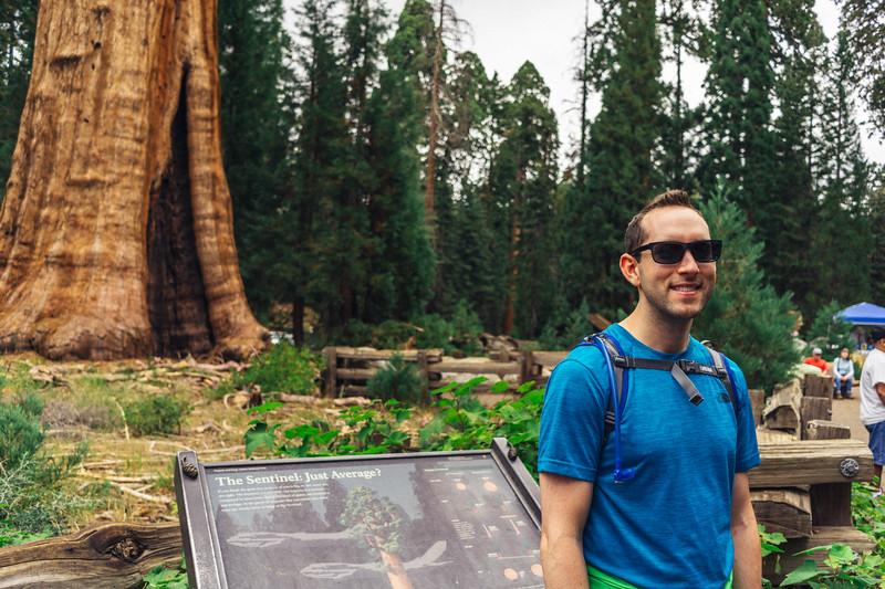 Rui in Sequoia-07032.jpg