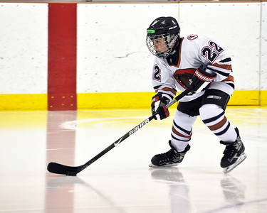 Squirt 4 Game Pics: 02.12.11