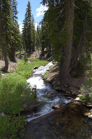 Journal Site 125:  Lassen Volcanic National Park, Kings Creek Falls Trail, Mineral, CA - July 8, 2009