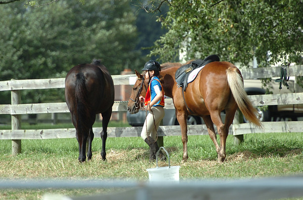 Equestrian Show 8-26-12