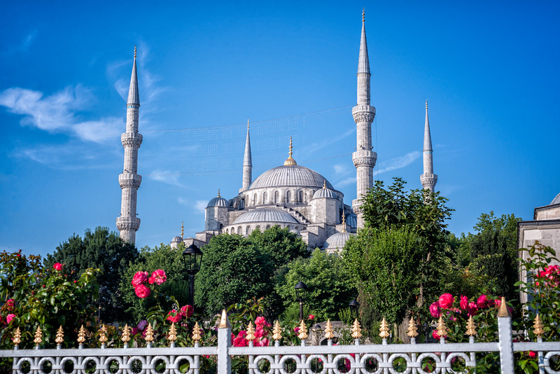 Blue-Mosque-with-floers.jpg