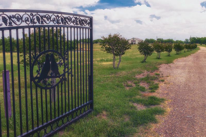 Mount Carmel (Branch Davidian) Waco