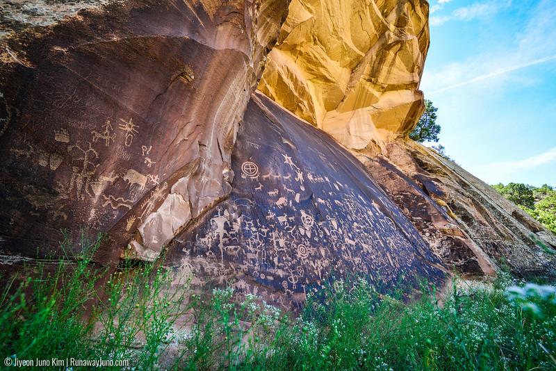 08.05_Dead Horse State Park-9271.jpg