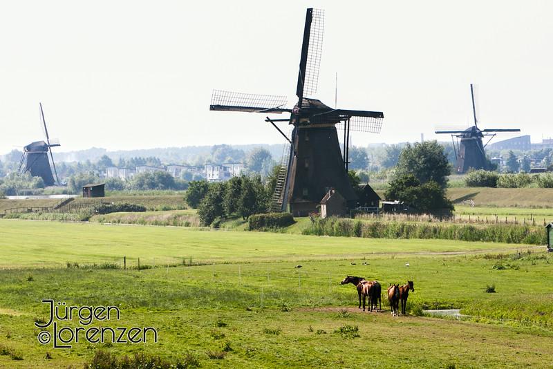 2013Europe_Holland_0503.jpg