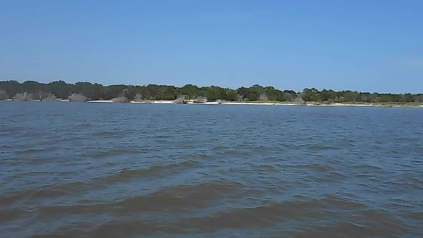 Jekyll Island Boat Tours Dolphin Daze Dolphin Videos no date -2