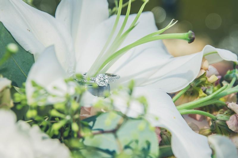 Rockford-il-Kilbuck-Creek-Wedding-PhotographerRockford-il-Kilbuck-Creek-Wedding-Photographer_G1A5795.jpg