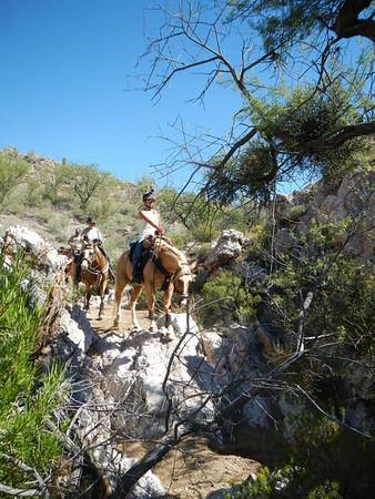 Apache Trail oct 2014
