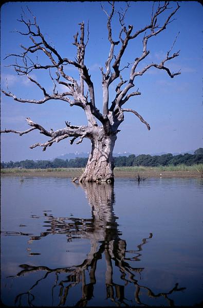 Myanmar1_080.jpg
