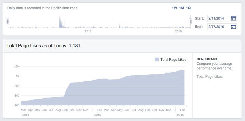Hanna Stables Belize Facebook Social Media Metrics.jpg