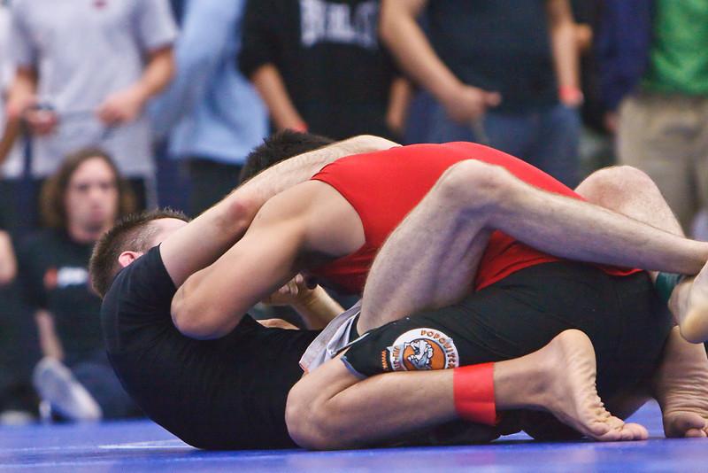 MMA_Houston_20090418_0724.jpg