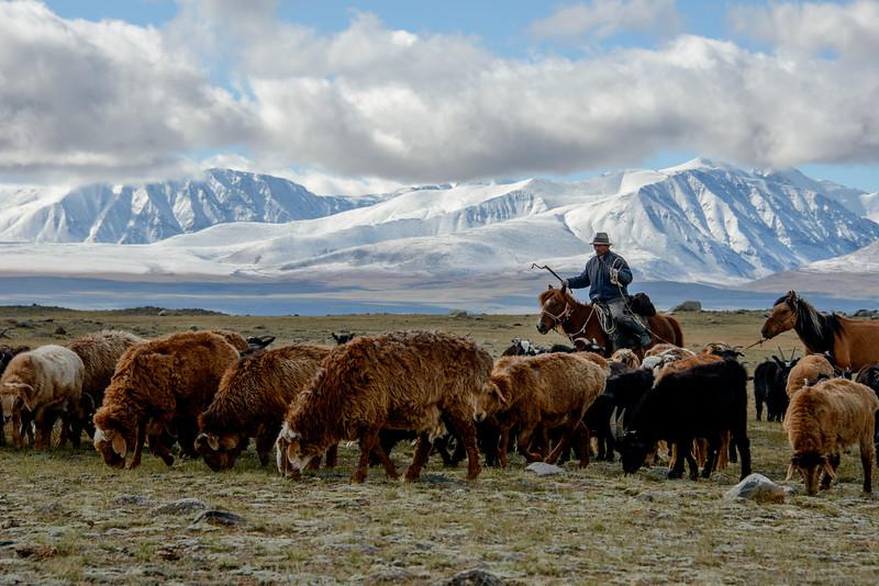 Mongolsko (529 of 640).jpg