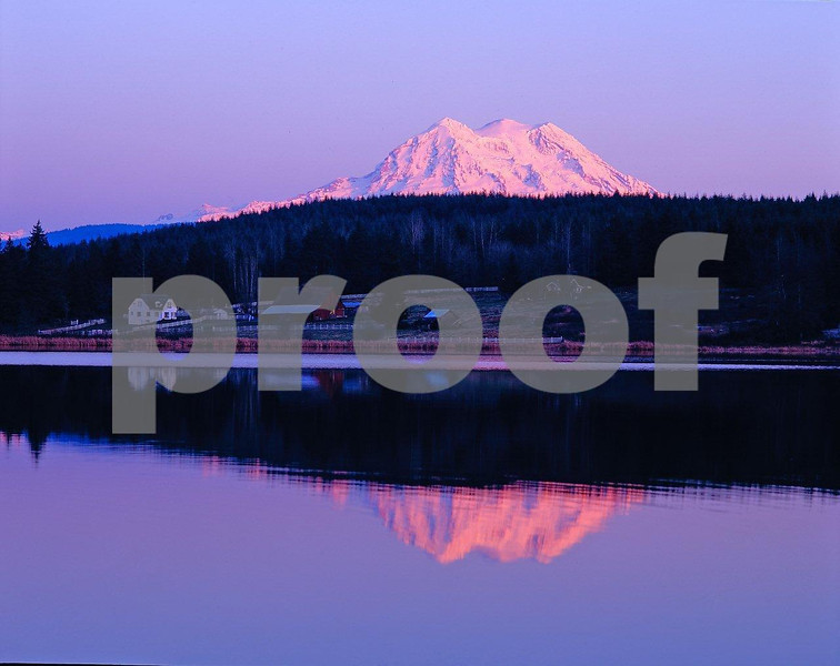 Mt. Rainier & Rapjohn L.-1.jpg