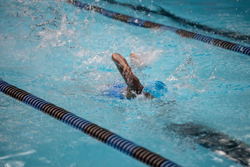 lcs_swimming_kevkramerphoto-985.jpg