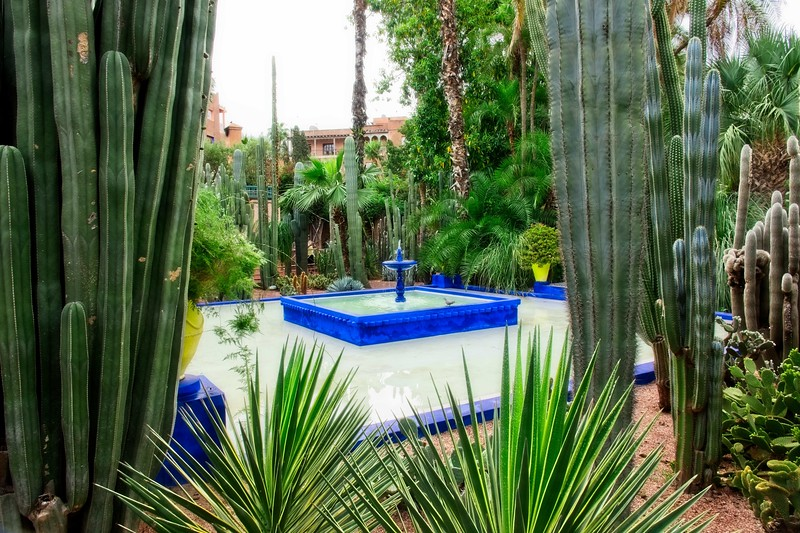 ysl garden morocco 2018.jpg