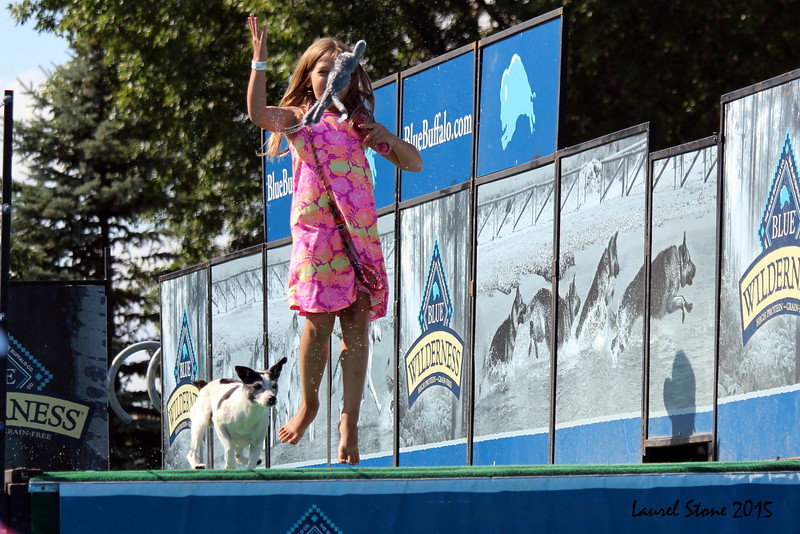 2015.8.5 Winnebago County Fair Dock Dogs (9).JPG