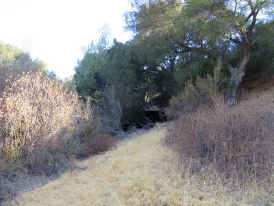 MRT Cold Creek