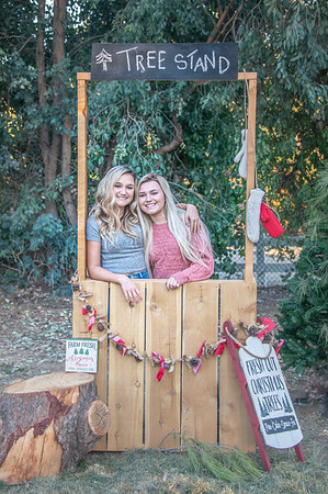 2019 Bonnie Holiday Mini Session