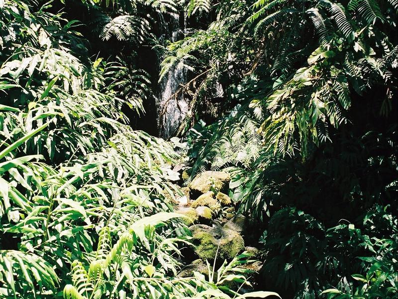 Hawaii-305.jpg