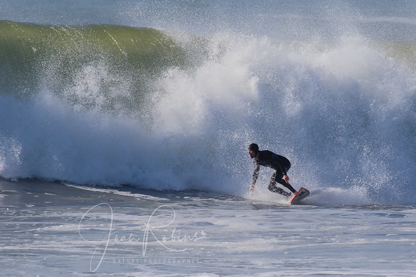 December Surfers 2014
