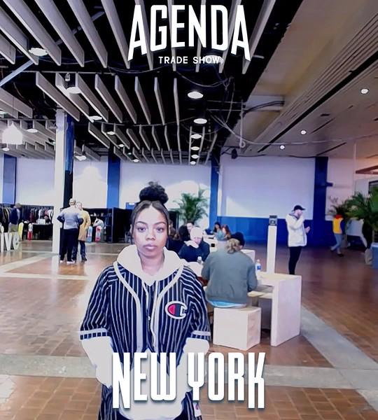 agendanyc_w2017_2017-01-25_08-27-00 {0.00-0.33}.mp4