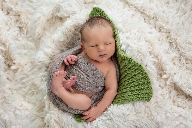 Newborns 201528.jpg