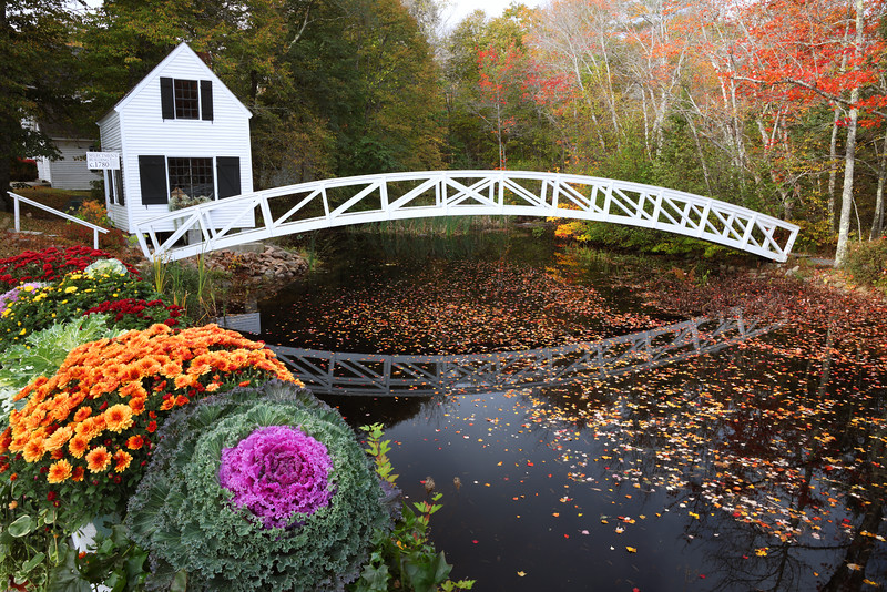 R5 Focus Stacking at the Somesville Bridge and Selectmen's Building
