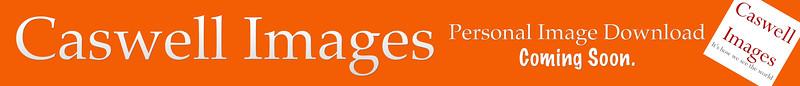 CIS PLace Holder Orange.jpg