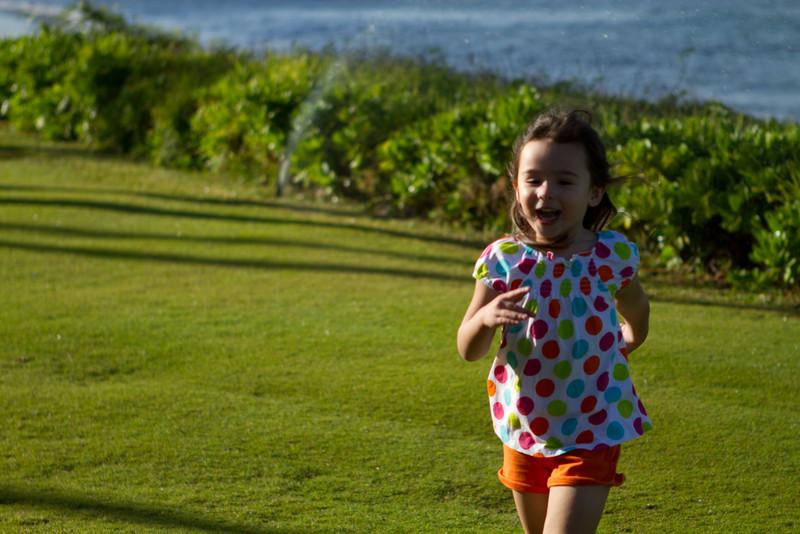 Hawaii2012-1798.jpg